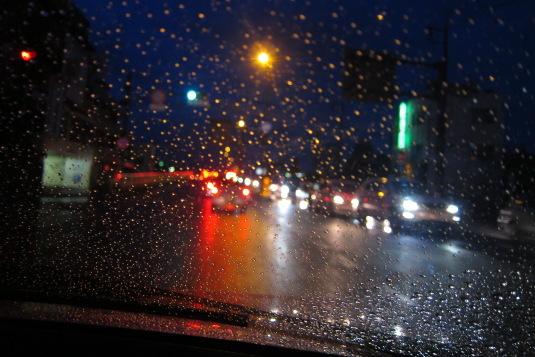 最終日もやはり雨